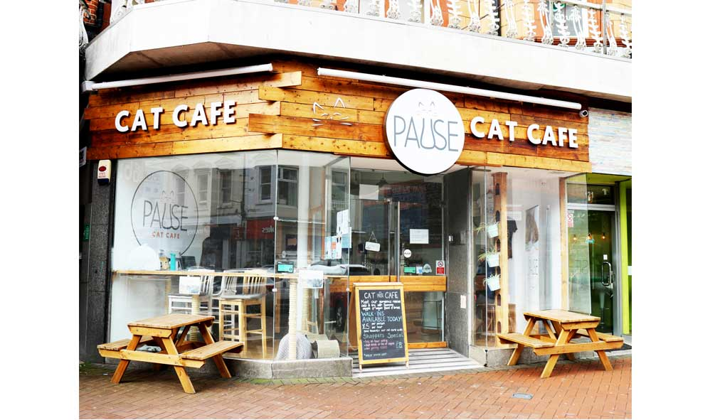 Pause-Cat-Cafe-Cafe-front